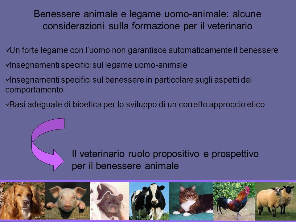 Benessere animale e legame uomo-animale: alcune considerazioni sulla formazione per il veterinario