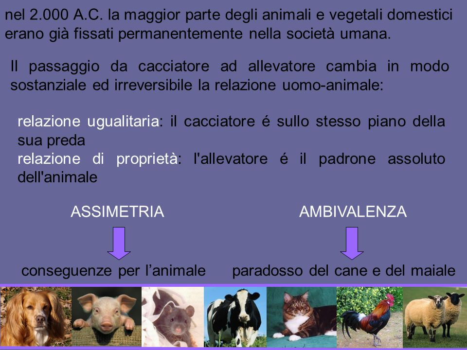 nel 2.000 A.C. la maggior parte degli animali e vegetali domestici erano già fissati permanentemente nella società umana.