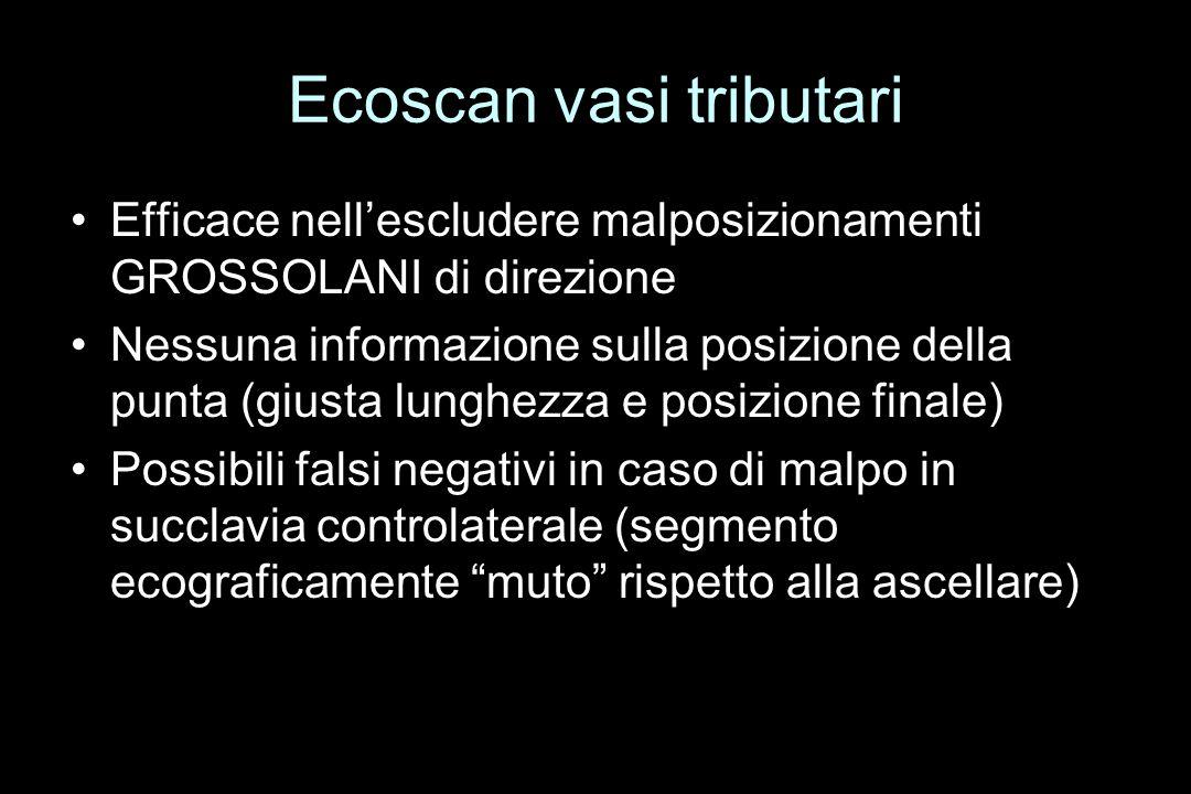 Ecoscan vasi tributari