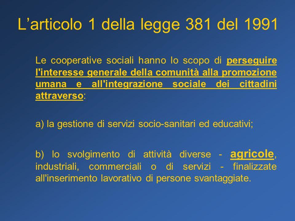 L'articolo 1 della legge 381 del 1991