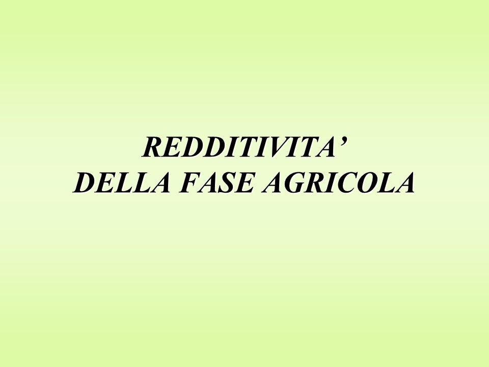 REDDITIVITA' DELLA FASE AGRICOLA