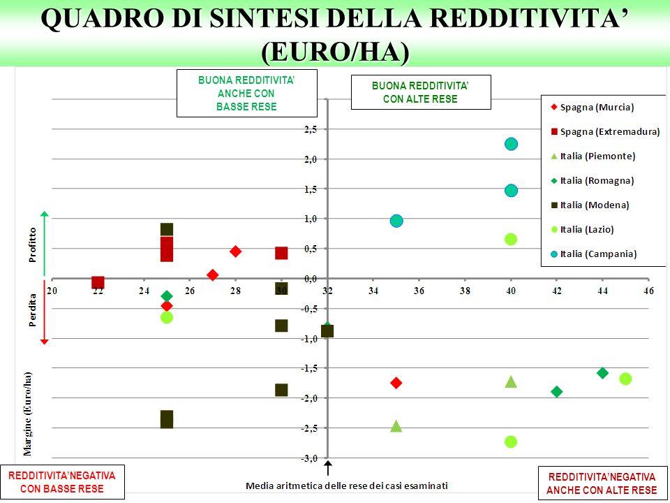 QUADRO DI SINTESI DELLA REDDITIVITA' (EURO/HA)