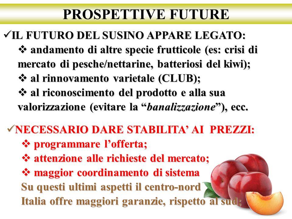 PROSPETTIVE FUTURE IL FUTURO DEL SUSINO APPARE LEGATO: