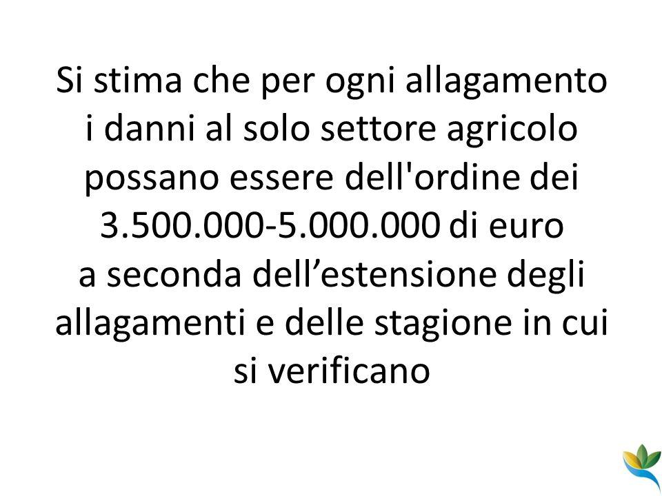 Si stima che per ogni allagamento i danni al solo settore agricolo possano essere dell ordine dei 3.500.000-5.000.000 di euro a seconda dell'estensione degli allagamenti e delle stagione in cui si verificano