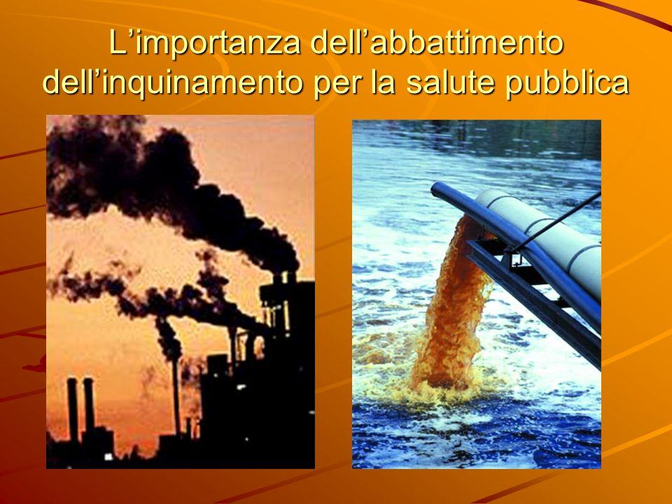 L'importanza dell'abbattimento dell'inquinamento per la salute pubblica