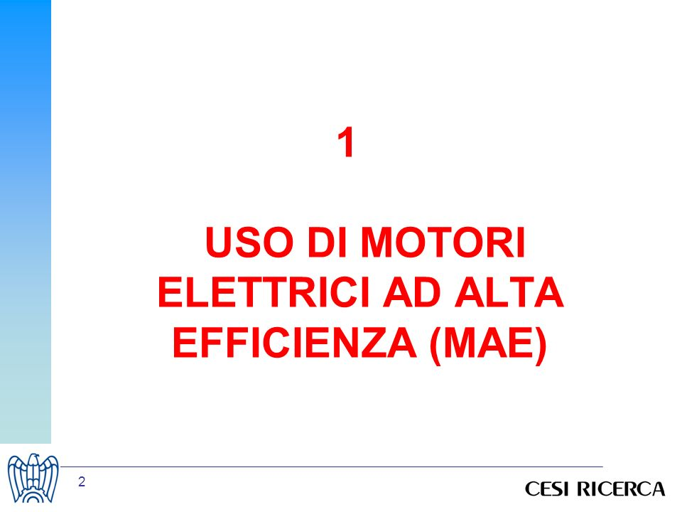 1 USO DI MOTORI ELETTRICI AD ALTA EFFICIENZA (MAE)
