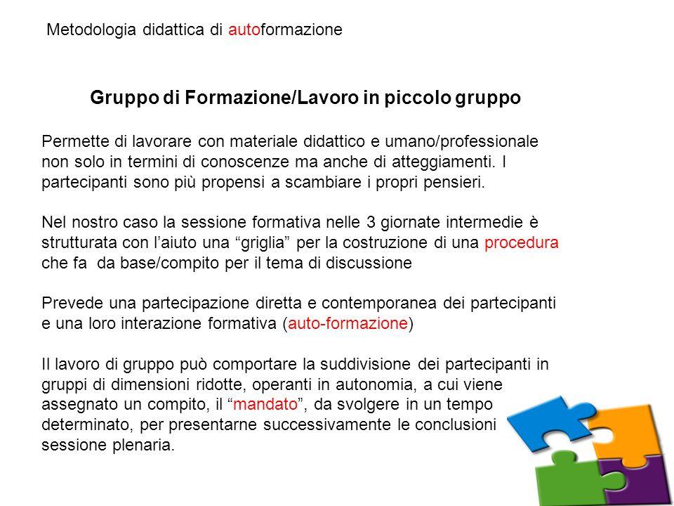 Gruppo di Formazione/Lavoro in piccolo gruppo
