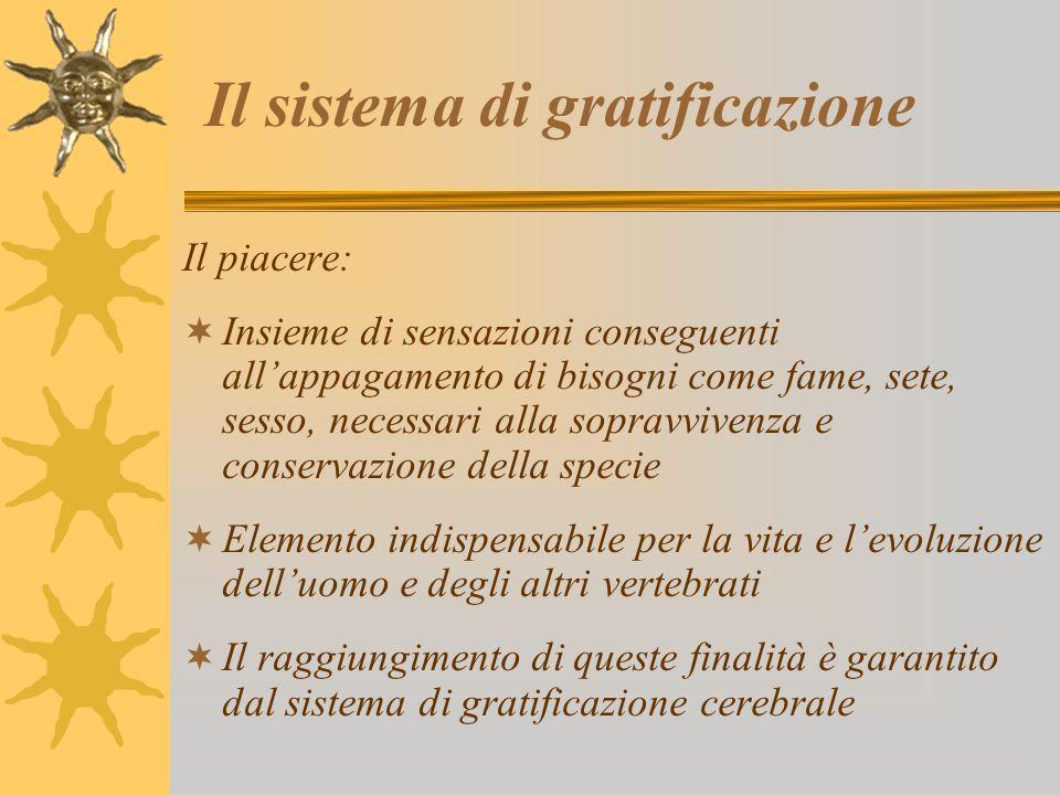 Il sistema di gratificazione