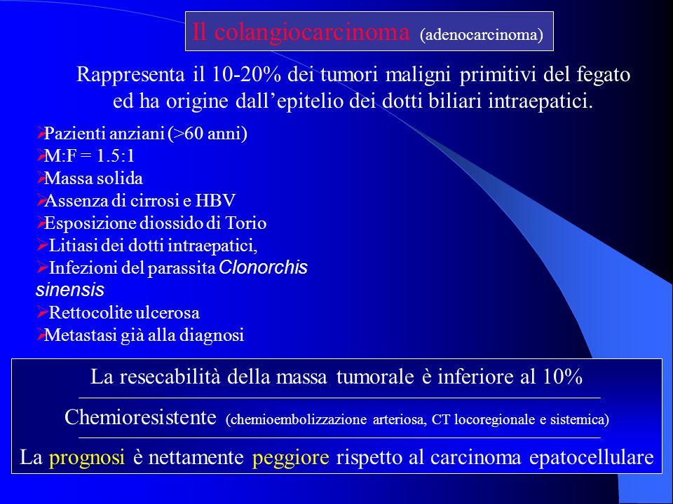 Il colangiocarcinoma (adenocarcinoma)