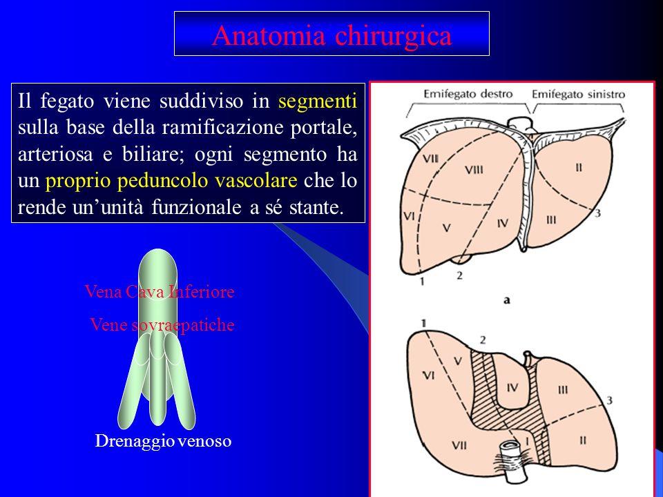 Anatomia chirurgica