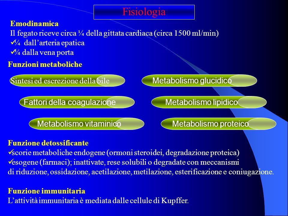 Fisiologia Emodinamica
