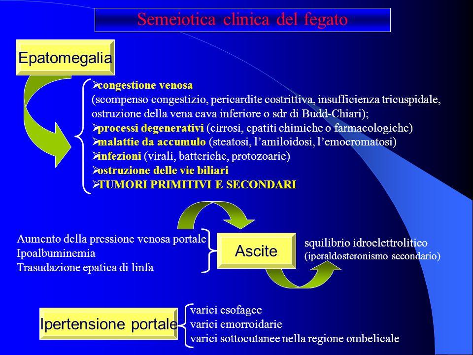 Semeiotica clinica del fegato