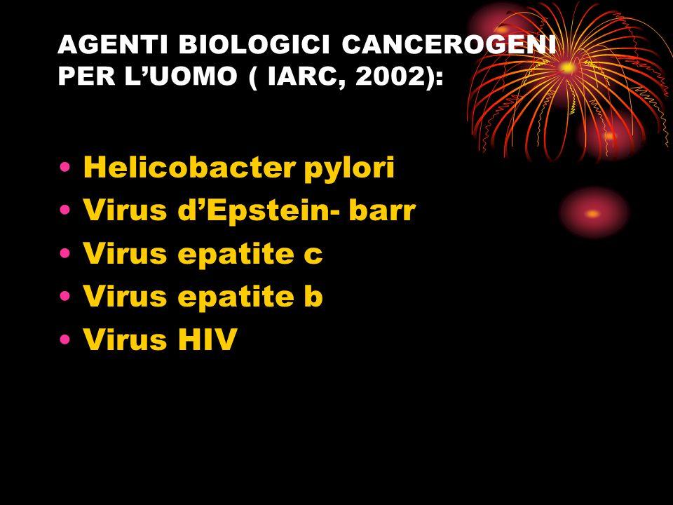 AGENTI BIOLOGICI CANCEROGENI PER L'UOMO ( IARC, 2002):