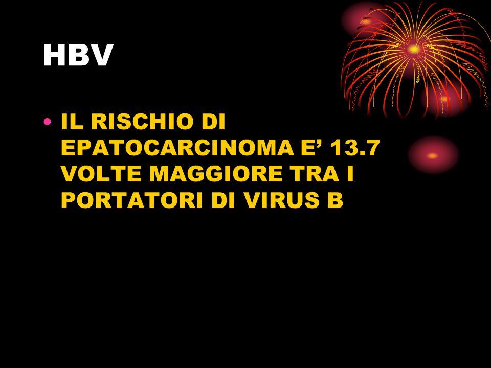 HBV IL RISCHIO DI EPATOCARCINOMA E' 13.7 VOLTE MAGGIORE TRA I PORTATORI DI VIRUS B
