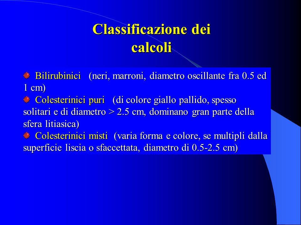 Classificazione dei calcoli