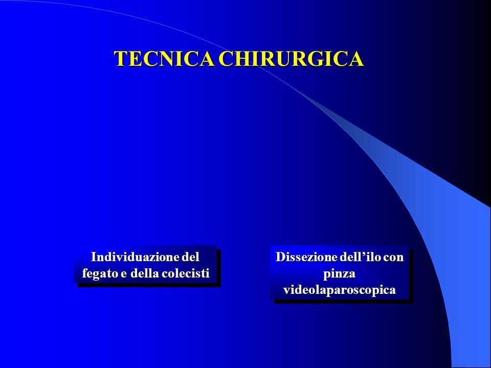 TECNICA CHIRURGICA Individuazione del fegato e della colecisti
