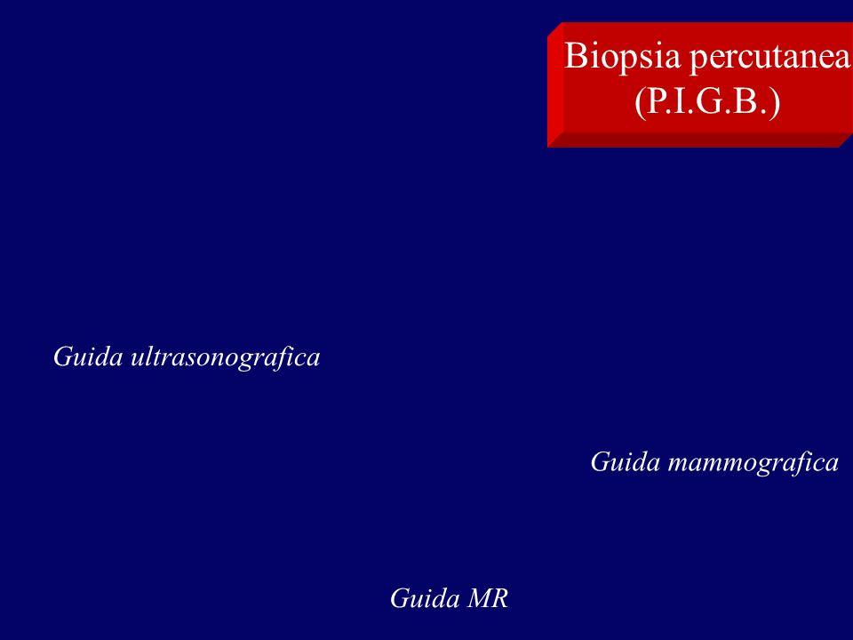 Biopsia percutanea (P.I.G.B.) Guida ultrasonografica