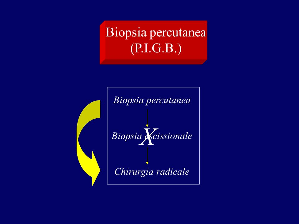 X Biopsia percutanea (P.I.G.B.) Biopsia percutanea