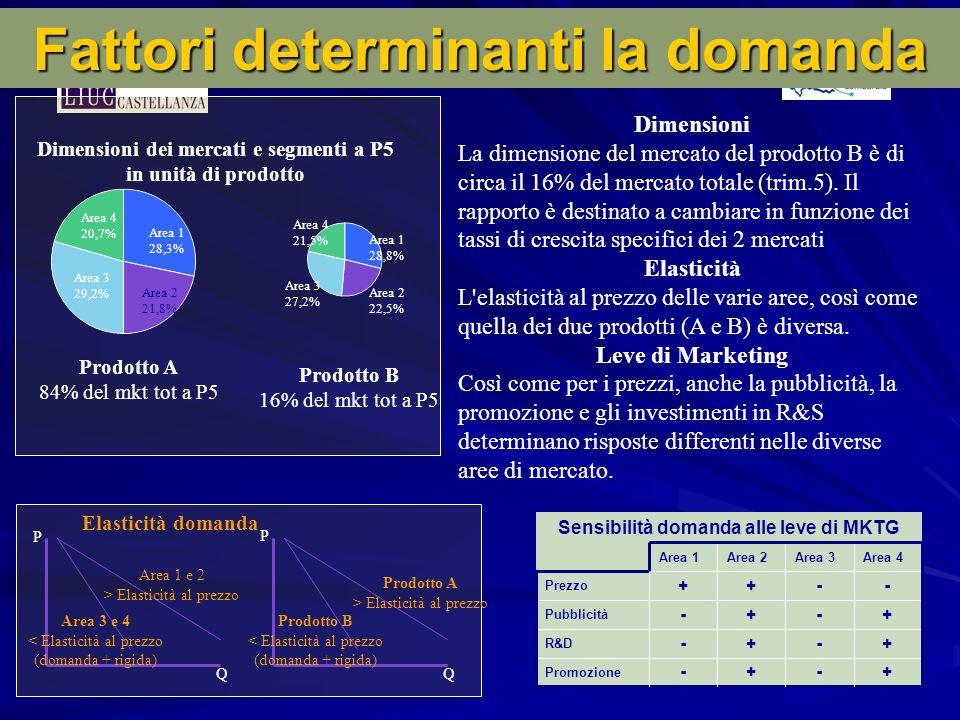 Fattori determinanti la domanda Dimensioni dei mercati e segmenti a P5