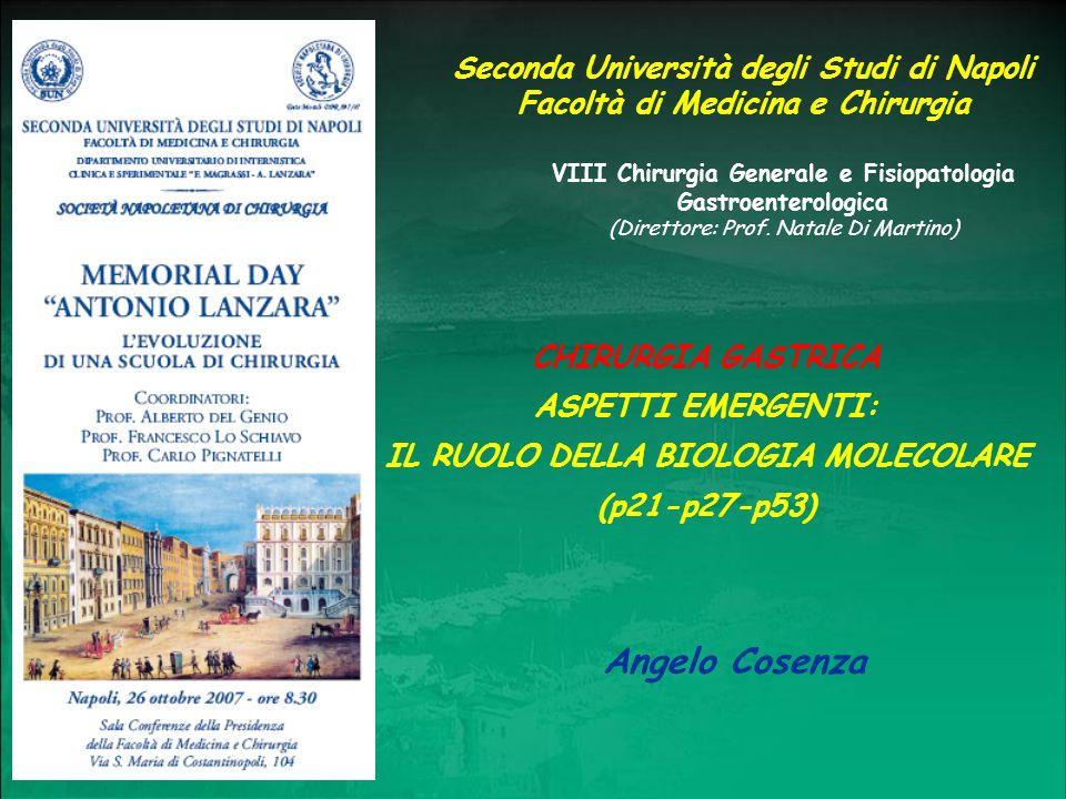 Angelo Cosenza Seconda Università degli Studi di Napoli