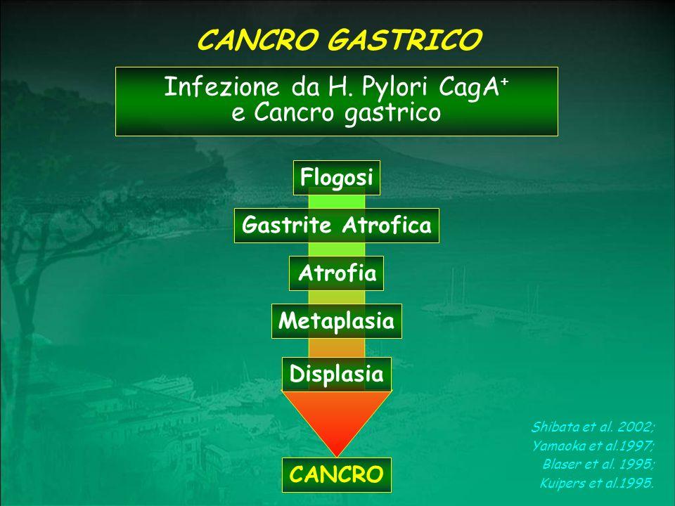 Infezione da H. Pylori CagA+ e Cancro gastrico