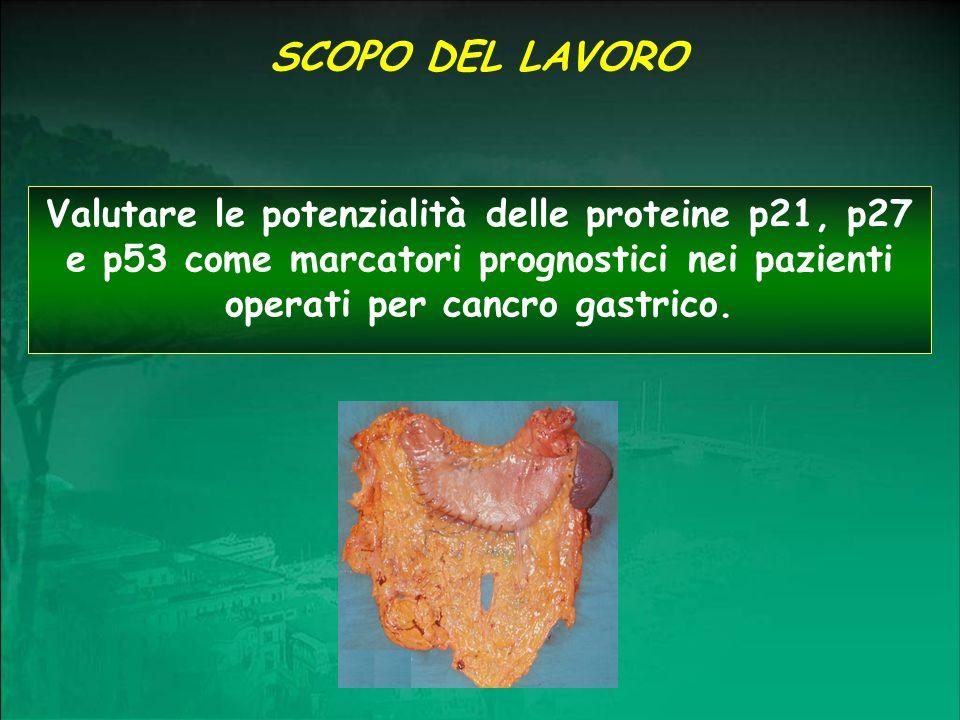 SCOPO DEL LAVOROValutare le potenzialità delle proteine p21, p27 e p53 come marcatori prognostici nei pazienti operati per cancro gastrico.