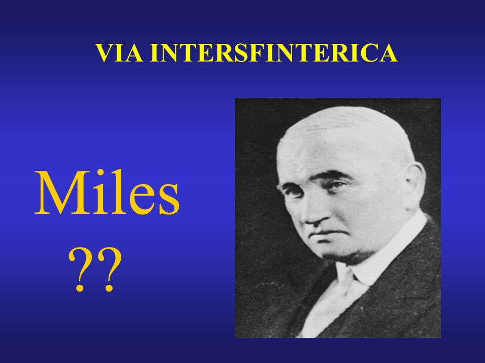 VIA INTERSFINTERICA Miles