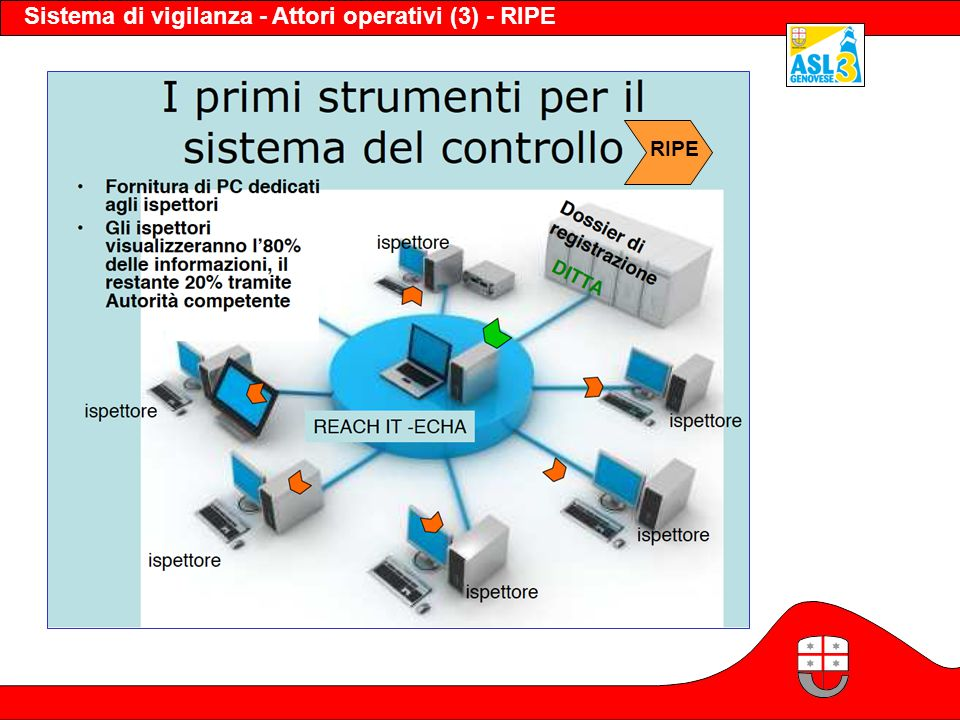 Sistema di vigilanza - Attori operativi (3) - RIPE