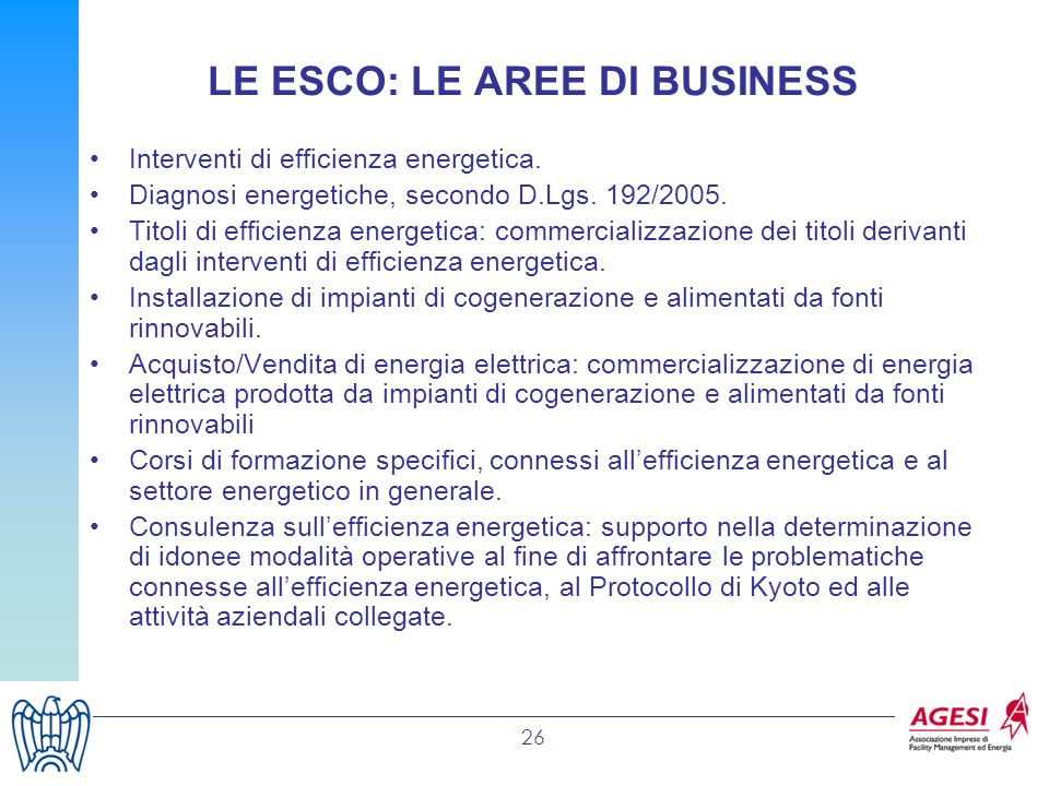 LE ESCO: LE AREE DI BUSINESS