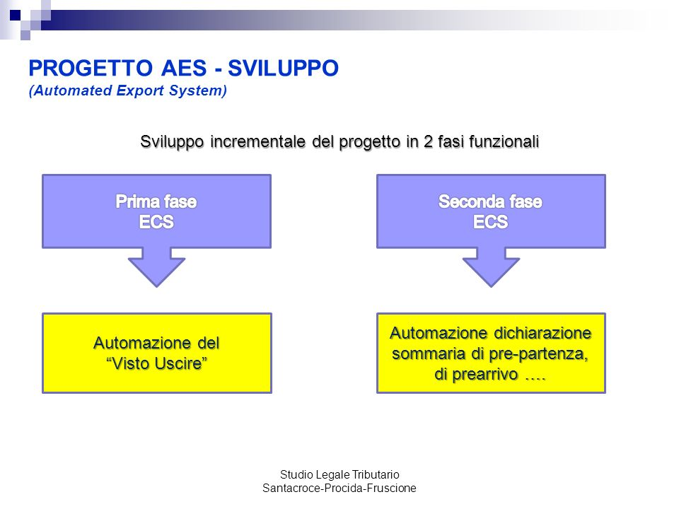 PROGETTO AES - SVILUPPO (Automated Export System)