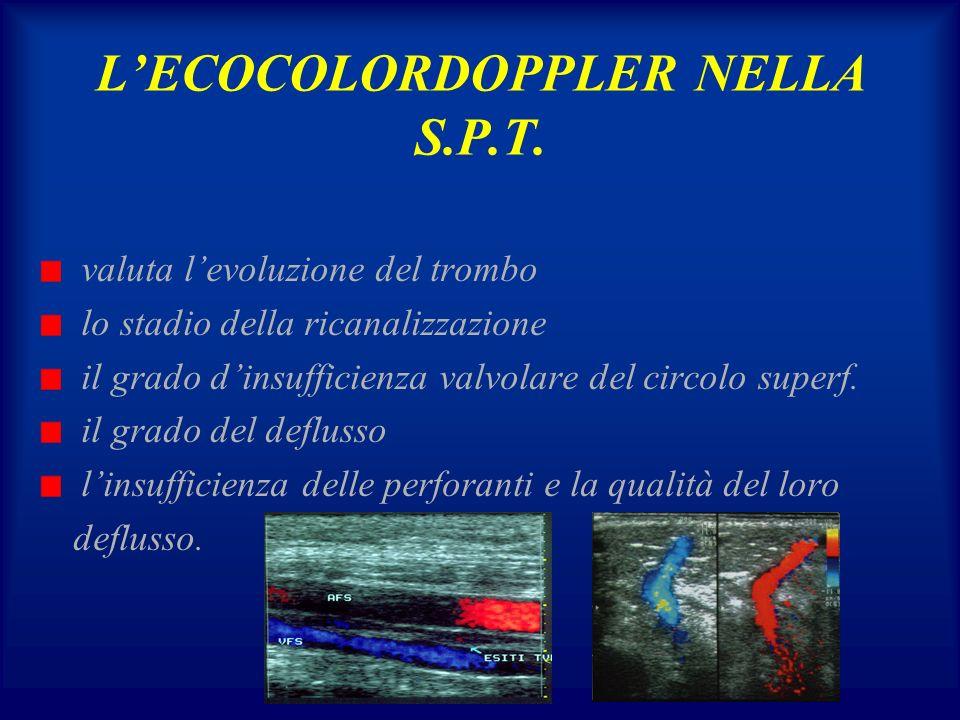 L'ECOCOLORDOPPLER NELLA S.P.T.