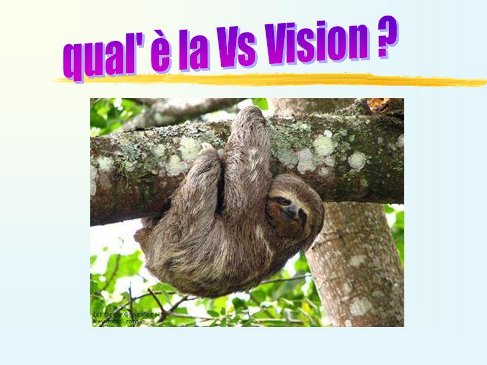 qual è la Vs Vision