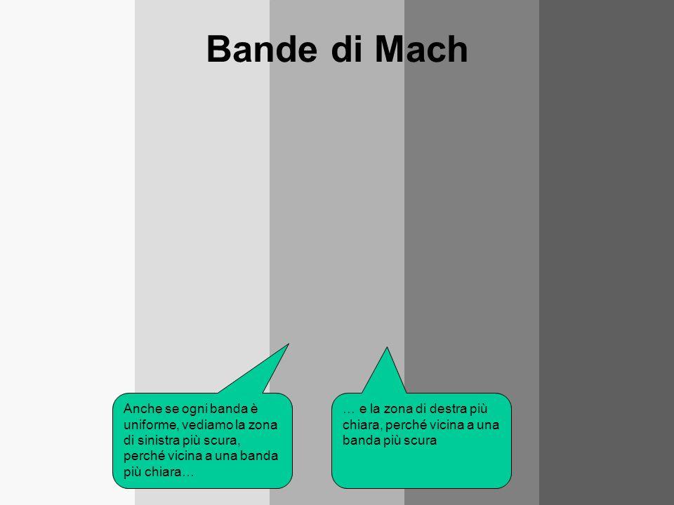 Bande di Mach Anche se ogni banda è uniforme, vediamo la zona di sinistra più scura, perché vicina a una banda più chiara…
