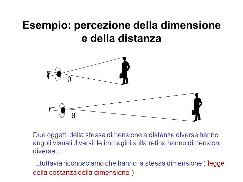 Esempio: percezione della dimensione e della distanza