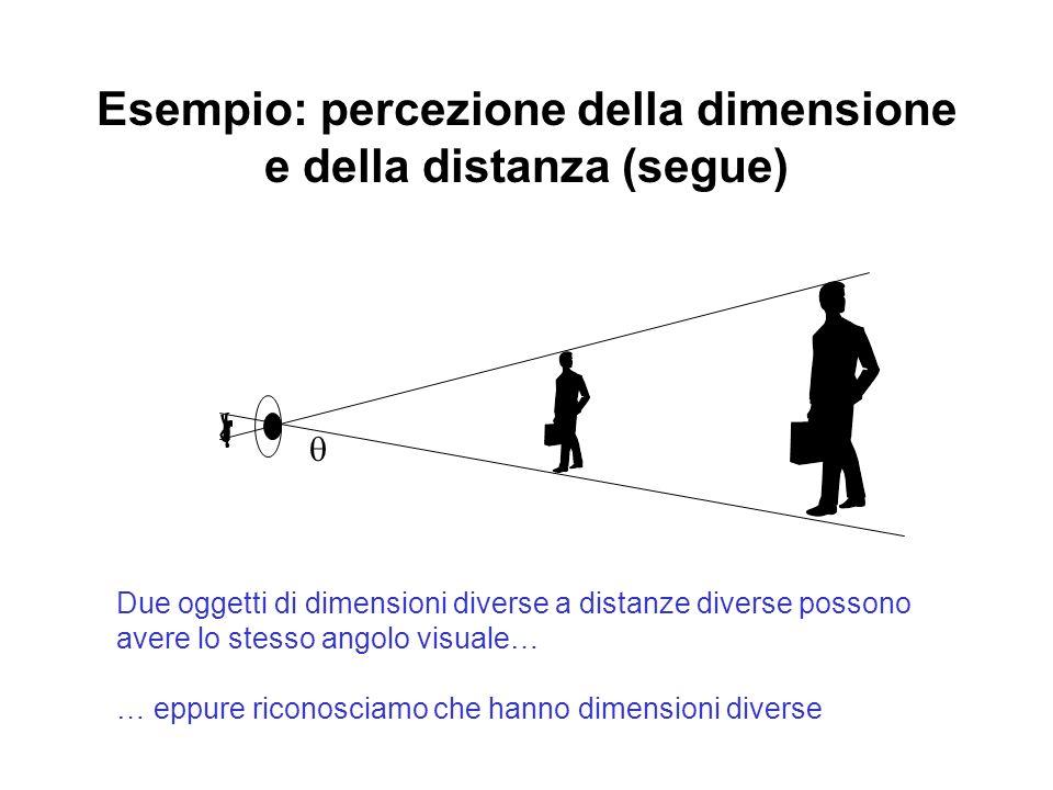 Esempio: percezione della dimensione e della distanza (segue)