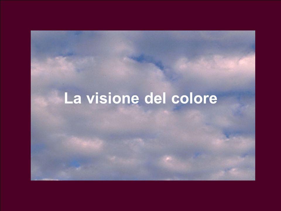 La visione del colore