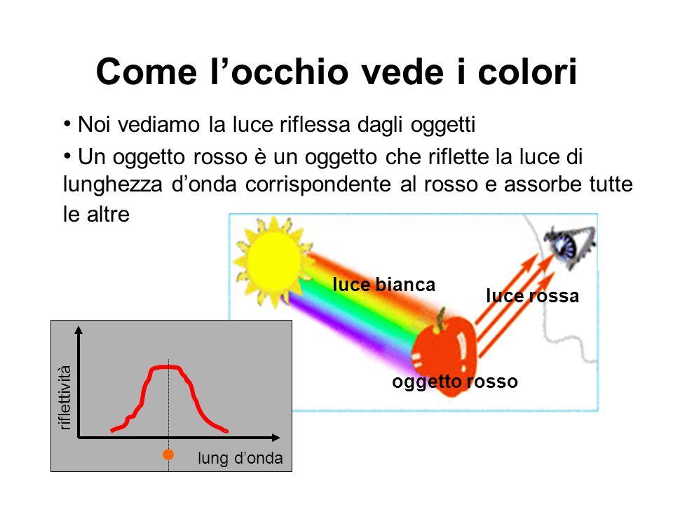 Come l'occhio vede i colori