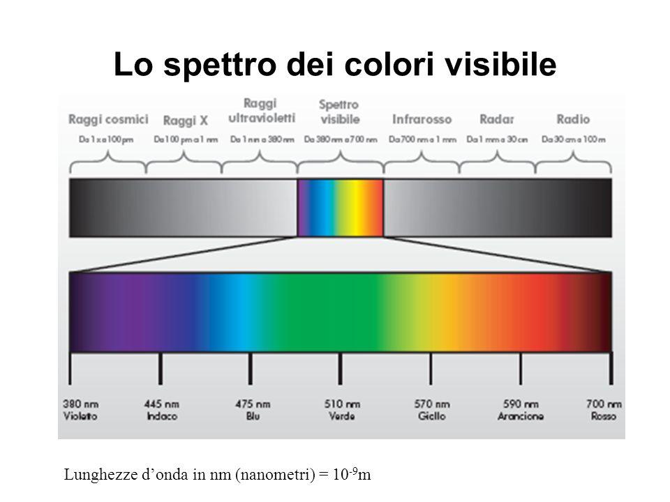 Lo spettro dei colori visibile