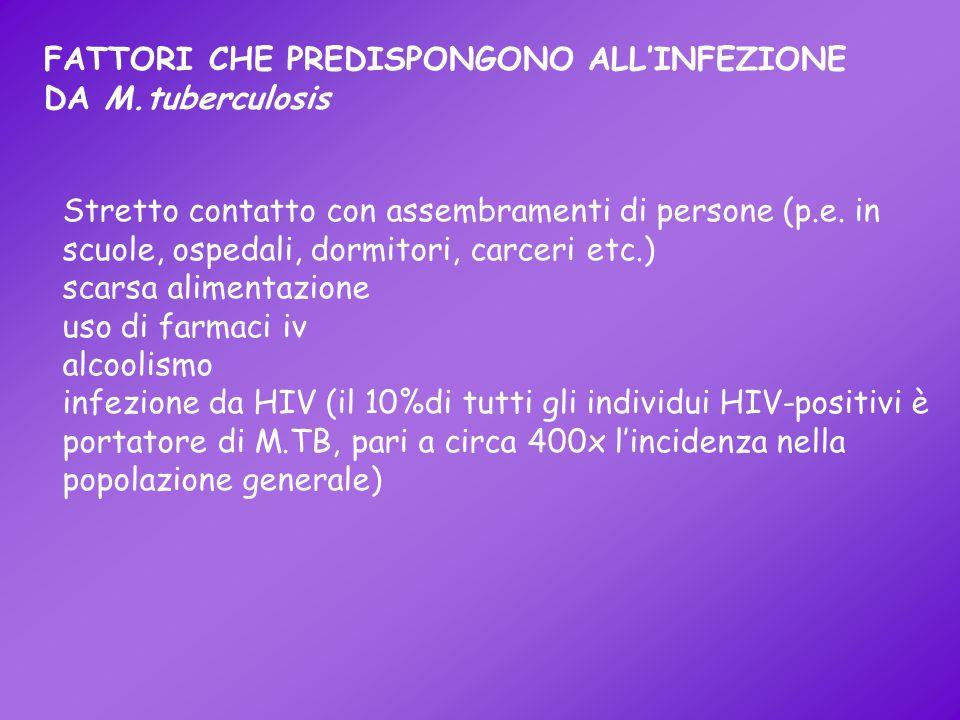 FATTORI CHE PREDISPONGONO ALL'INFEZIONE DA M.tuberculosis