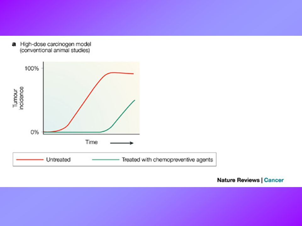 Figure 3 | Extension of the latency period is important for chemoprevention in both animals and humans.