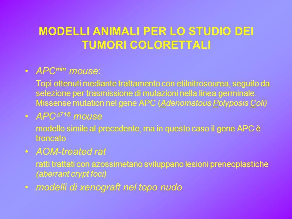 MODELLI ANIMALI PER LO STUDIO DEI TUMORI COLORETTALI