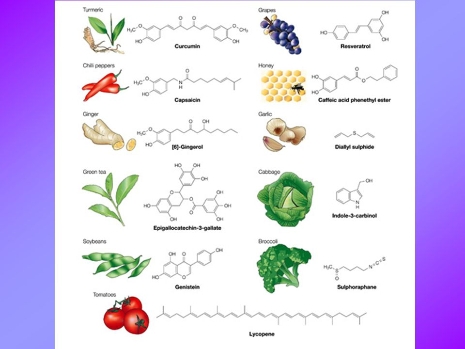 Representative chemopreventive phytochemicals and their dietary sources