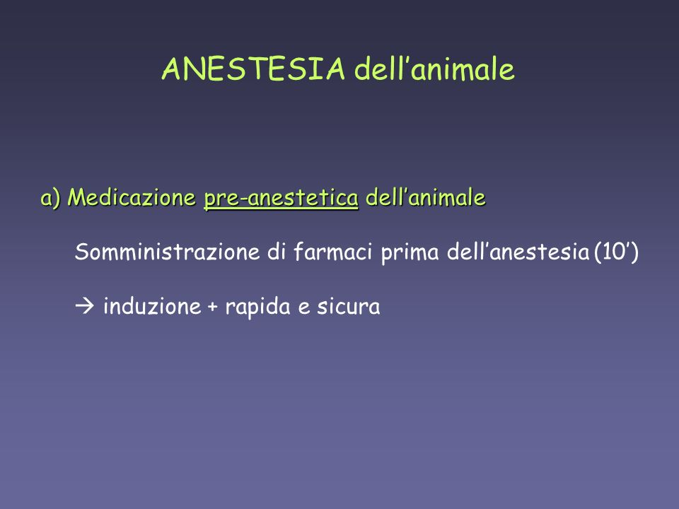 ANESTESIA dell'animale