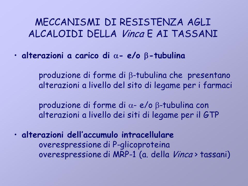 MECCANISMI DI RESISTENZA AGLI ALCALOIDI DELLA Vinca E AI TASSANI