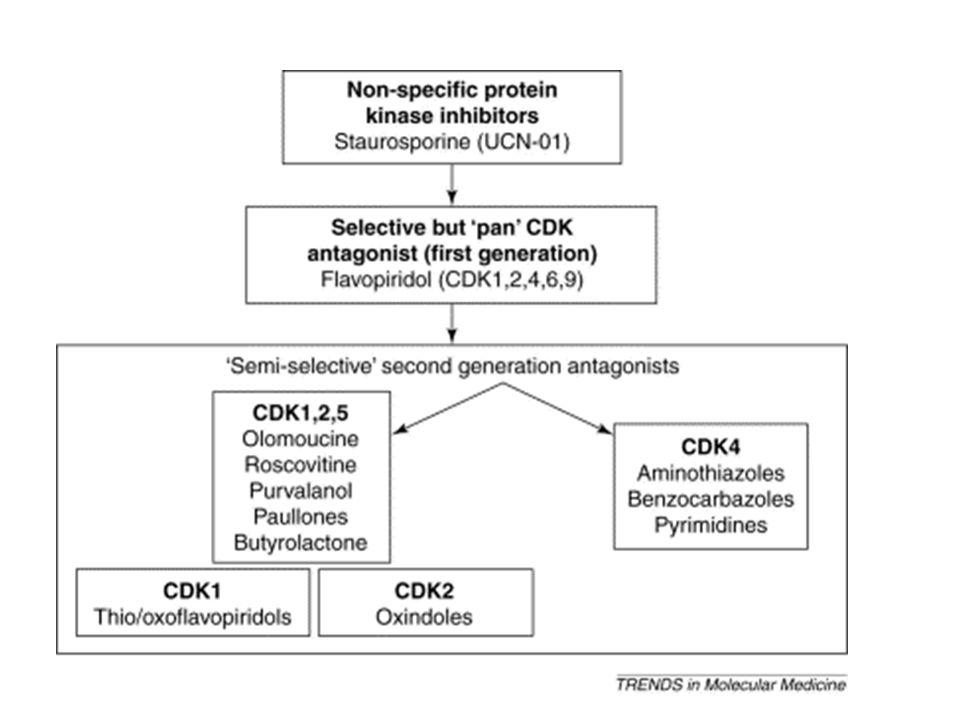 Generations of cyclin-dependent kinase inhibitor compounds