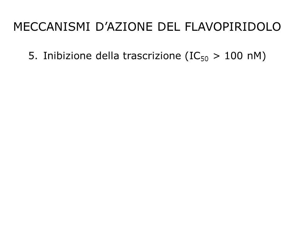 MECCANISMI D'AZIONE DEL FLAVOPIRIDOLO