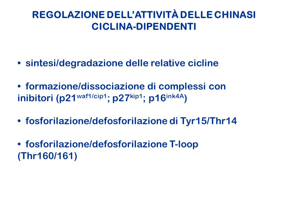 REGOLAZIONE DELL'ATTIVITÀ DELLE CHINASI CICLINA-DIPENDENTI