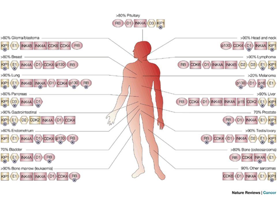 Mutation of G1/S regulators in human cancer