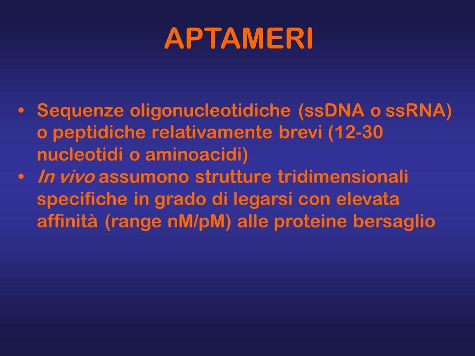APTAMERI Sequenze oligonucleotidiche (ssDNA o ssRNA) o peptidiche relativamente brevi (12-30 nucleotidi o aminoacidi)