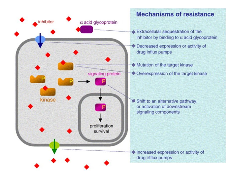 Fig. 1. Overview of the different mechanisms of resistance